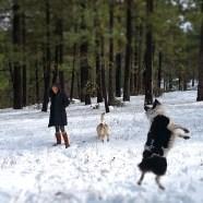 Noe throwing a snowball-good aim