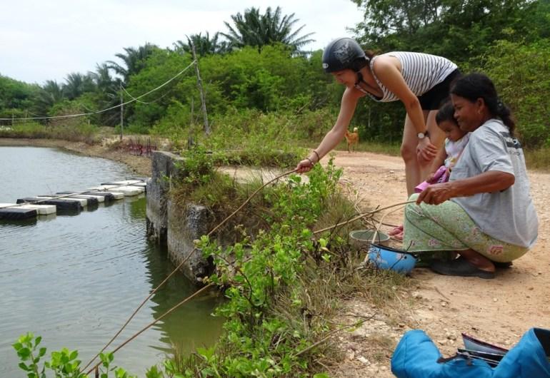 Fische füttern auf Koh Lanta