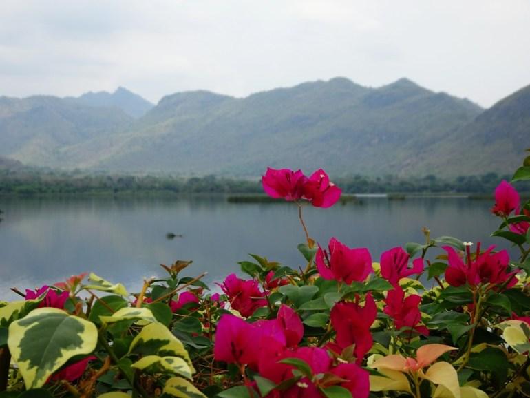 Blumen am Stausee Kanchanaburi