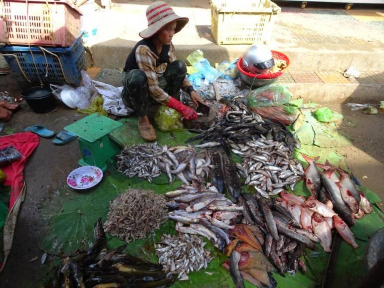Battambang traditioneller Markt