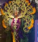 Mardi Gras Costume