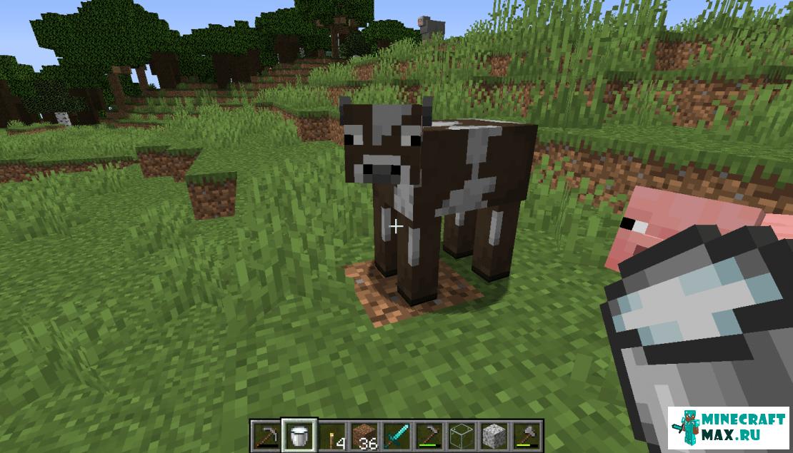 Cum să faci o găleată în Minecraft | Screenshot 1.