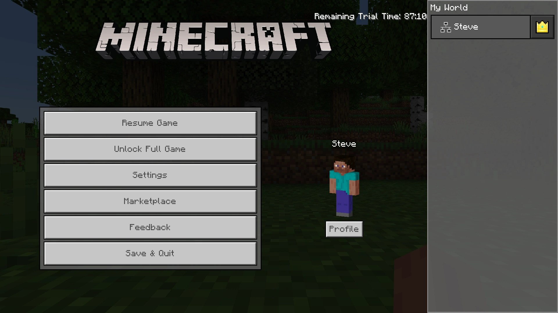 FileWin10Demo6png Official Minecraft Wiki