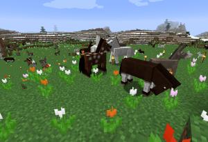 登ってきた馬たち