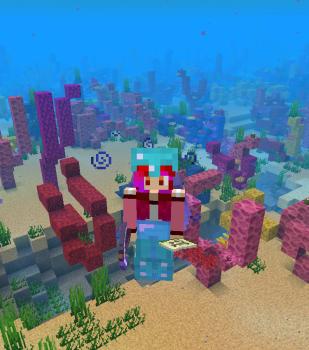 サンゴを集めよう