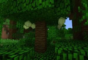 ジャングルでした