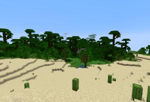 ジャングルの寺院まで…