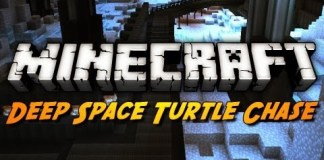 Deep Space Turtle Chase Map
