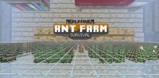 Ant Farm Survival Map