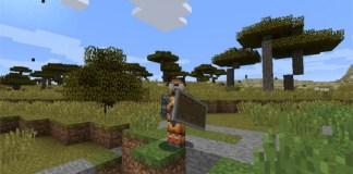 ShieldHider Mod for Minecraft