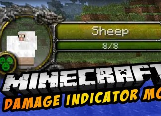 Damage Indicators Mod minecraft