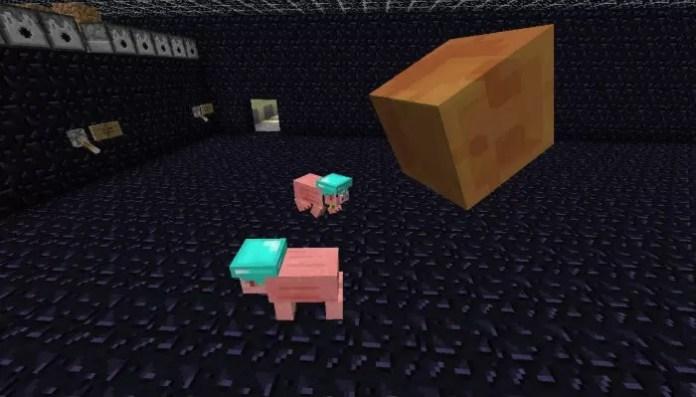 mc-pig-companion