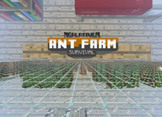 ant farm survival