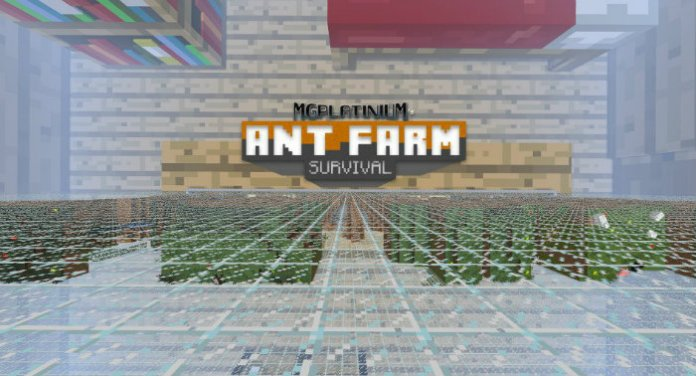 ant-farm-survival-1