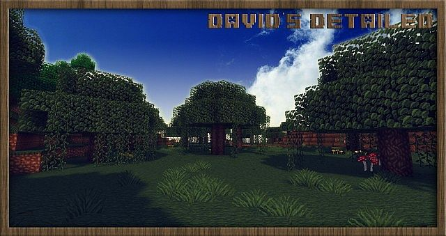 david's-detailed-resource-pack