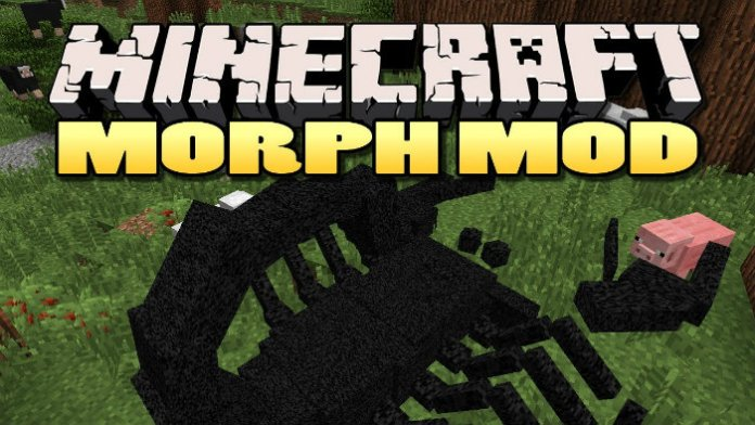 morph-1
