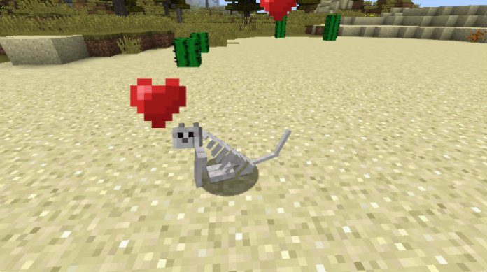 oblivion-the-skeleton-cat