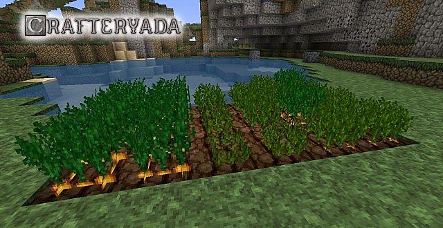 crafteryada-5
