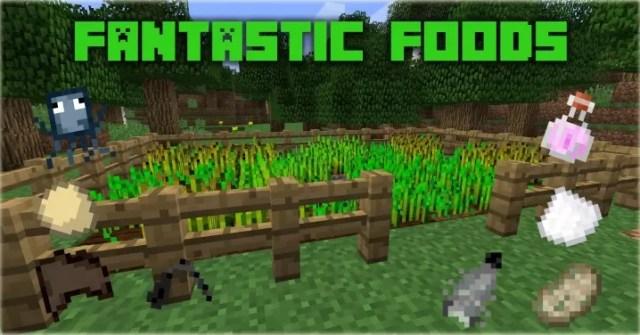 fantastic-foods-2