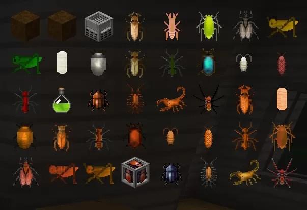 edible-bugs-mod-1