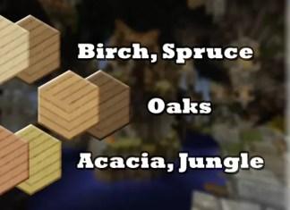 bic revamped resource pack