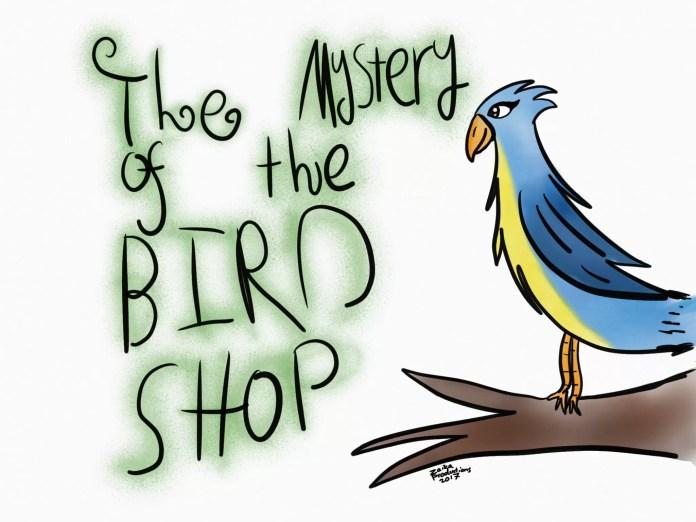 mystery-bird-shop-map-1-700x525