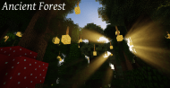 Ancient Forest