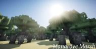Mangrove Marsh