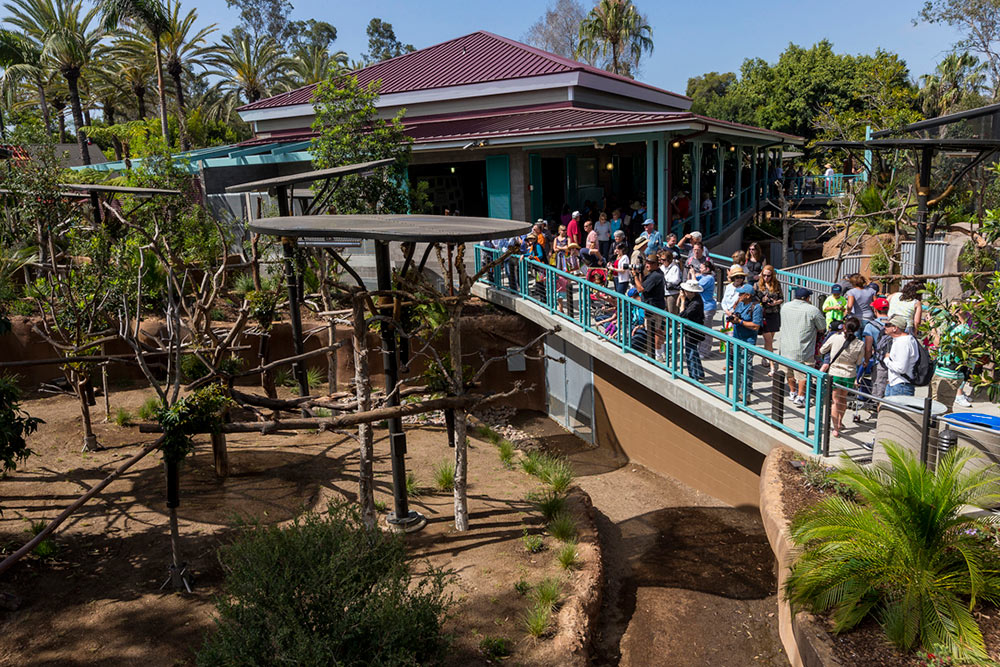 australian outback san diego zoo minegar inc minegar contracting inc