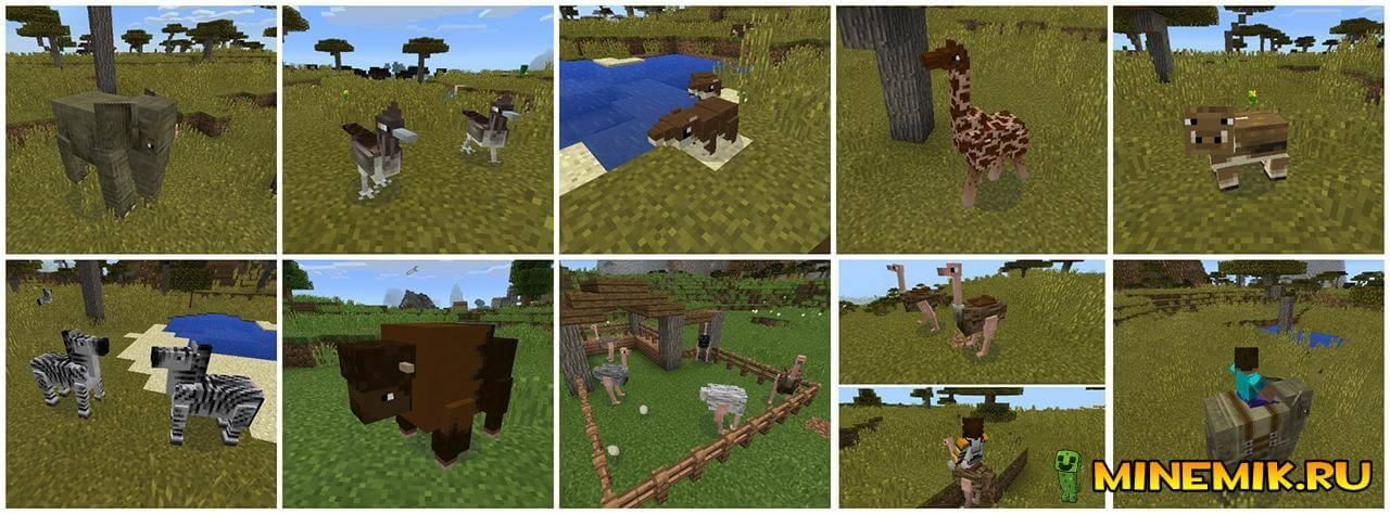 Новые животные в моде Pocket Creatures