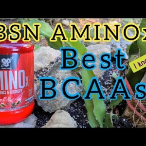 BSN AMINOx BCAAs - best amino acids 2020