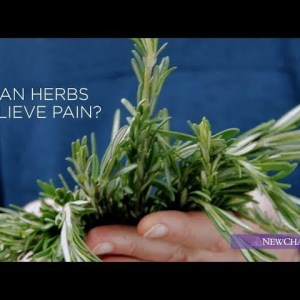 Zyflamend™: 10 Pure Herbs, One Potent Formula