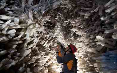 Fotografía: sciencesource.com