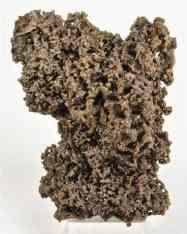 clorargirita bromiana