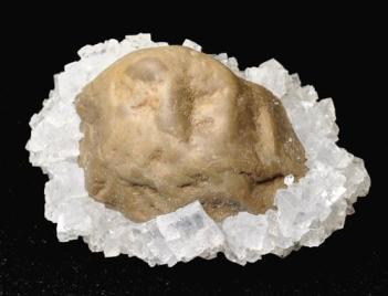 Cubos de halita incrustados en una roca