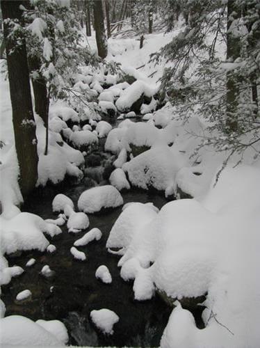 Nieve en polvo