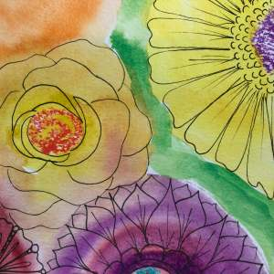 meaning of roses, symbols, roses, ultimate blog challenge, the100dayproject