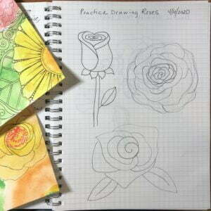 drawing roses, symbols, ubc, 100 day project