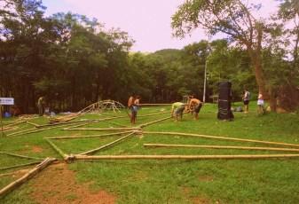 Bamboo_20120324_037