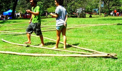 Bamboo_20120326_039