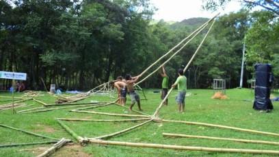 Bamboo_20120410_066