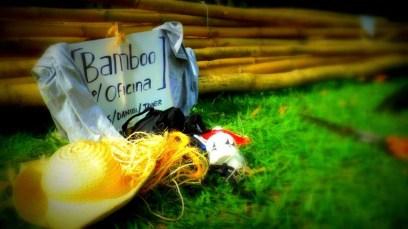 Bamboo_20120410_069