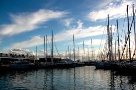 Palma Hafen 1