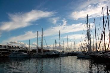 Palma Hafen 5