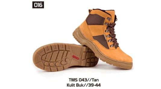 016-TMS-043