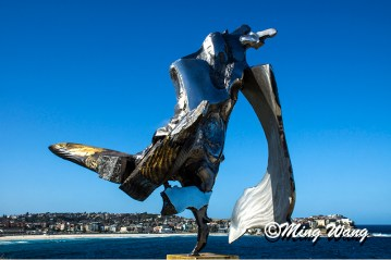 SculptureBondi_DSC05164_8002