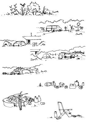 Assateague National Park Mini Sketches