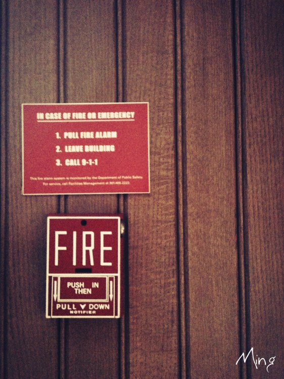 The Solitary of A Fire Alarm