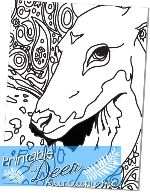 free printable deer adult coloring page