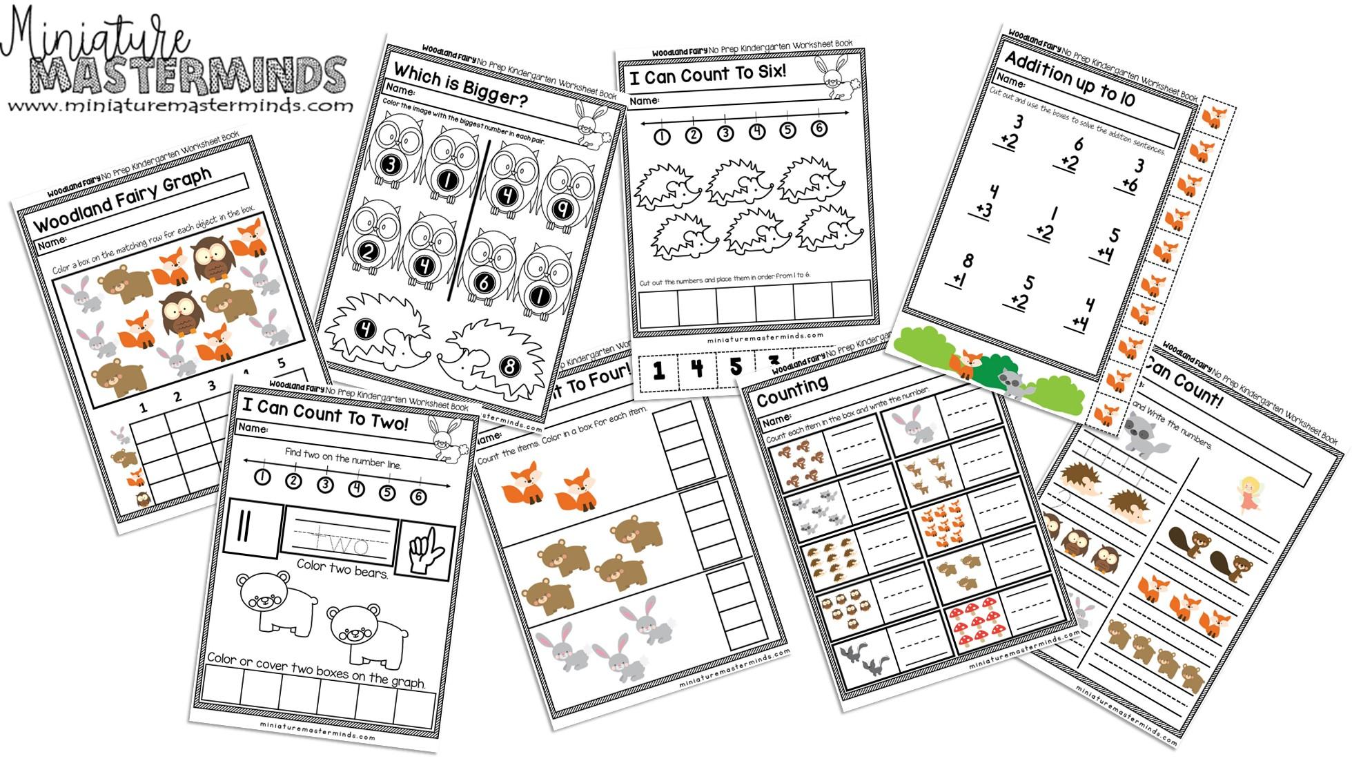 Preschool And Kindergarten Fairy Wood Land Creatures